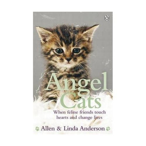 angel_cats